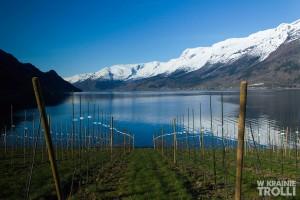 Eidfjord, Lofthus & Odda 003